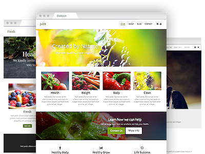 An assortment of easy to re–design site templates